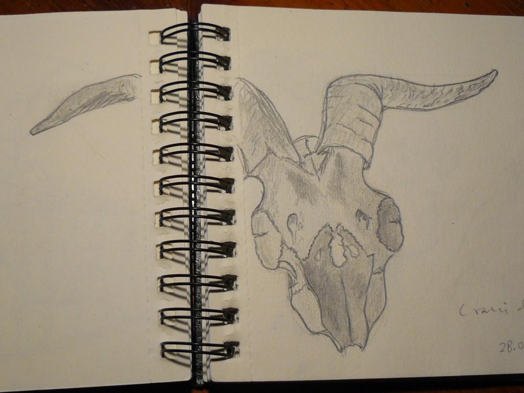 Crani de cabra