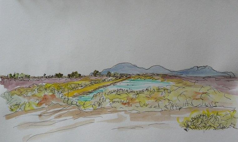 Salobrar paisatge llevant