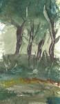 paisatge boscà 2 detall 2