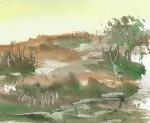 terreny amb roques detall