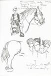 9 festa de cavalls a Gura Raului