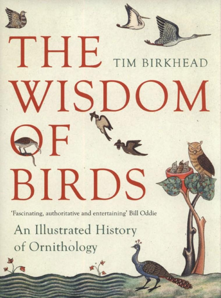 wisdom birds