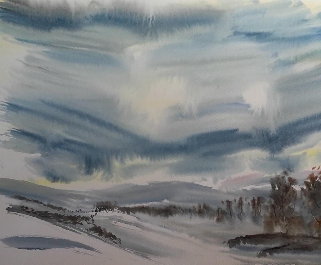 paisatge nevat